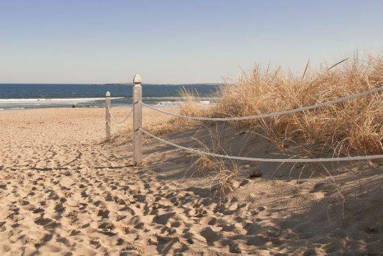 billowhouse-beach-path